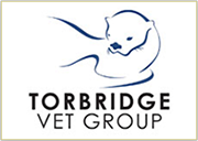 Torbridge Vet Group